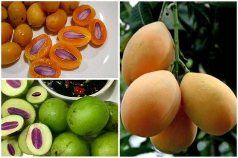 20 edible fruit, which you have not even heard