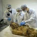 500-year-old mummy of a monk can give the answer to why we suffer from rheumatism