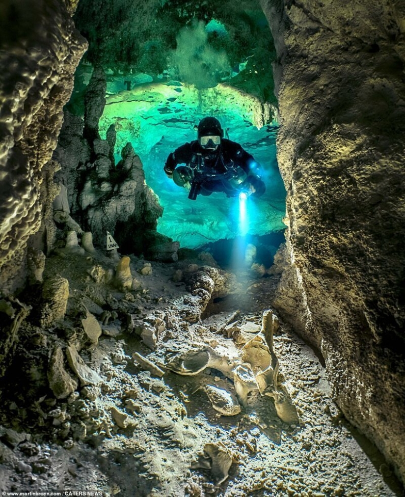A diver risks his life making stunning images of underwater caves in Mexico