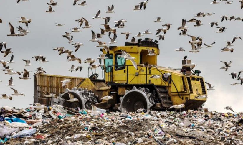 From the master's table, or How the US exports its garbage to third world countries