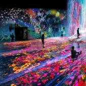 Japan opened the world's first interactive Museum of digital art