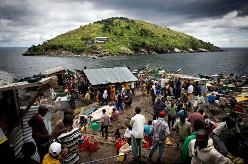 Mpingo is the most densely populated island in the world
