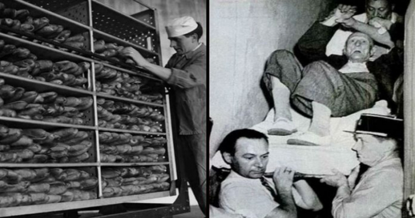 Mystery of the cursed bread: who is to blame, the CIA, Stalin or ergot?