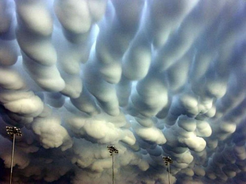 Natural phenomena that are hard to believe