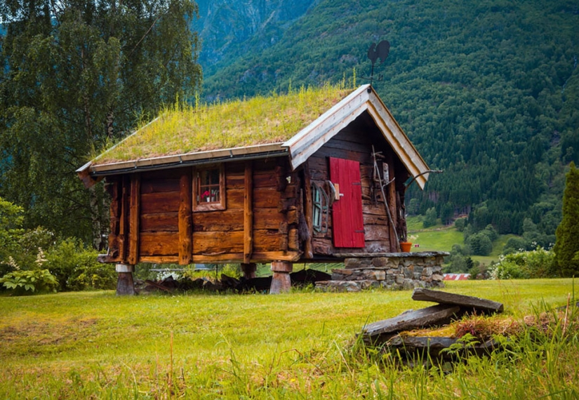 Scandinavian houses with overgrown roof, which I want to settle immediately