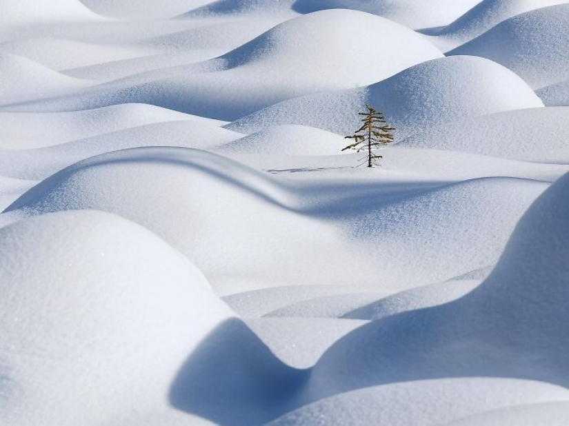 Snow wonders that you will see once in your life
