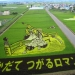 The art of Tambo — incredible pictures in the rice fields of Japan