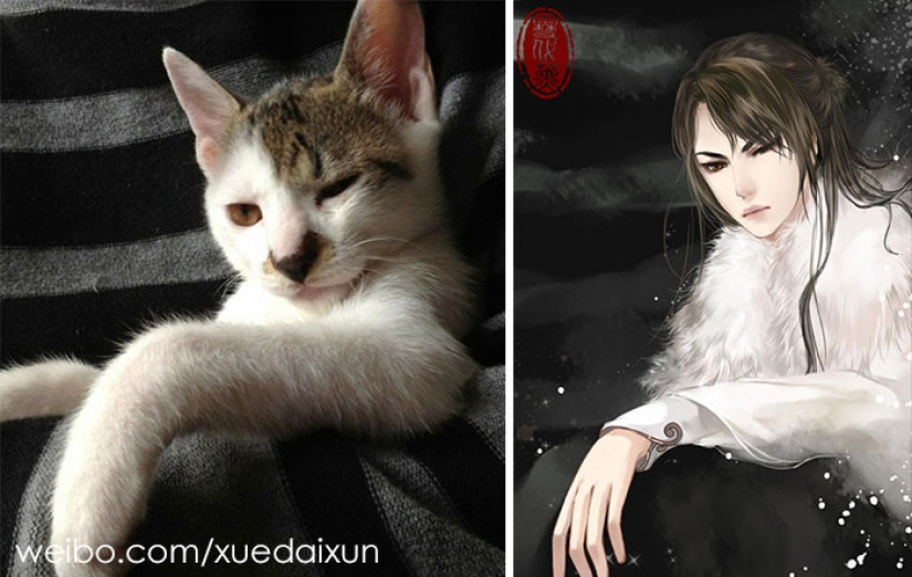 The Chinese artist turns cats and other animals in people, and it's incredibly