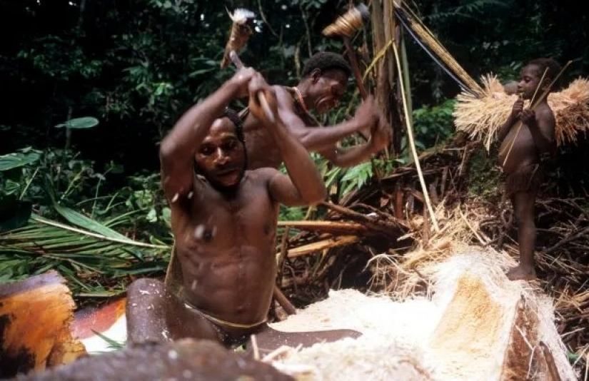 The last cannibals: the tribes in which eat human flesh and carried out the blood rituals