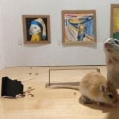 Why in London he opened a tiny art gallery for mice-gerbils