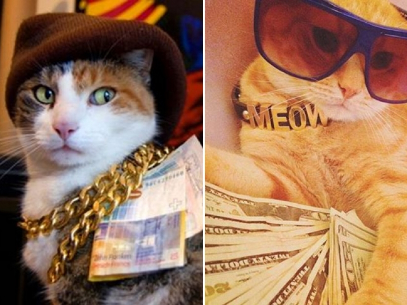 Cards, money, two barrel: 20 gangsteritto photos from instagram