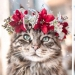 Milota squared: 25 Pets in floral wreath from a talented designer