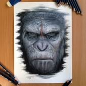 Pencil drawings by Dino Tomic