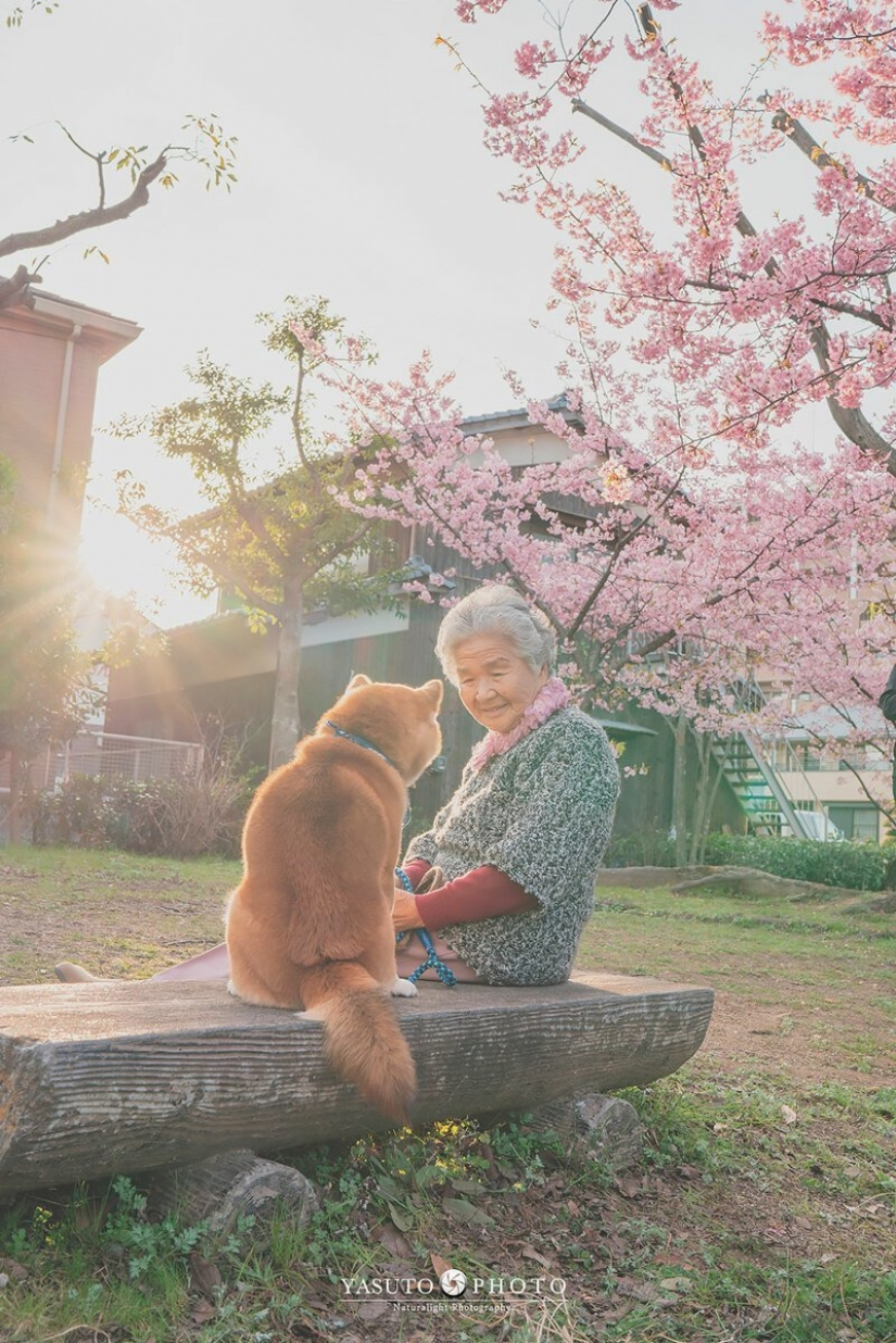 Photographer from Japan makes touching photos of his grandmother and dog