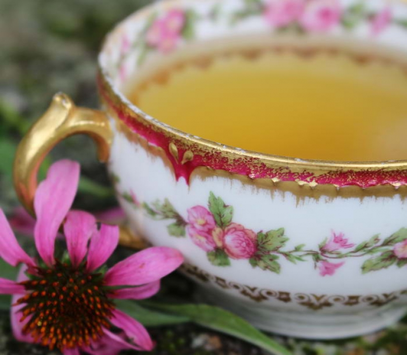 The benefits of different types of tea