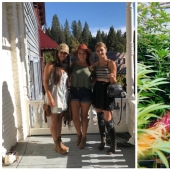 "To grow hemp, fighting off bears girlfriend refused from the comfort to live ""out of range"""